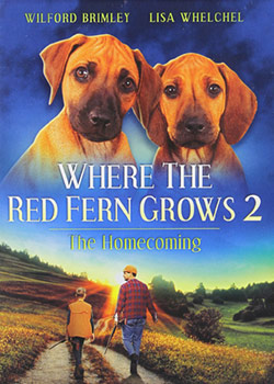 Billy Coleman returns from WWII to his grandfather's home in Louisiana and tries to readjust to civilian life. But the killing he witnessed in the war, along with the fact that he has lost a leg to an enemy bullet, has embittered him. Grandpa had anticipated Billy's state of mind and has a therapeutic gift waiting for him: a pair of Redbone hound puppies - just like the ones he had as a boy. In addition to the puppies, Billy befriends a young neighborhood boy, Wilson, who reminds him of himself. Wilson and the hounds become closest friends and together they help Billy to rediscover the gift of giving - ultimately rediscovering himself.