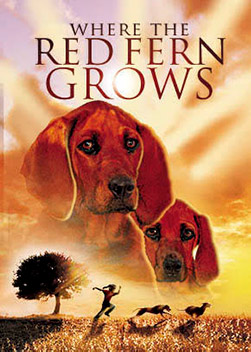 Billy yearns for two hound dogs, which his parents can't afford during the Depression in the Ozarks. After earning enough to buy two Redbone Coon Hounds, Billy and his dogs have an adventure filled with suspense, tragedy and ultimately, a love and loyalty of family and friendship.