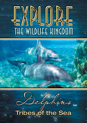 Explore the Wildlife Kingdom: Dolphins, Tribes of the Sea