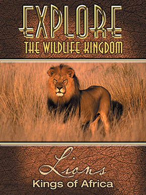 Explore the Wildlife Kingdom: Lions, Kings of Africa