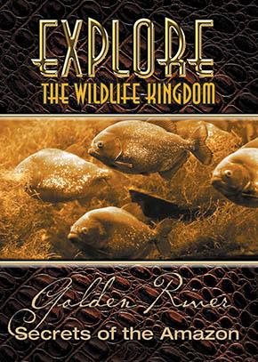 Explore the Wildlife Kingdom: The Golden River, Secrets of the Amazon
